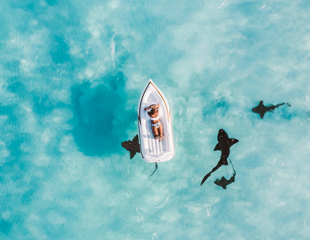 Woman lazing on raft surrounded by sharks