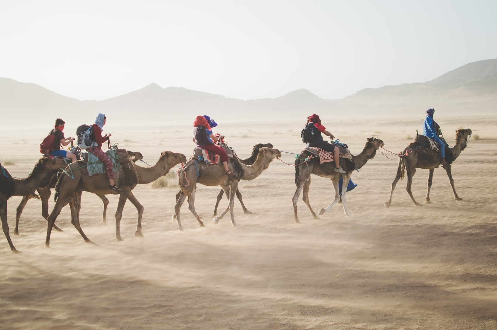 Camel riders crossing the desert