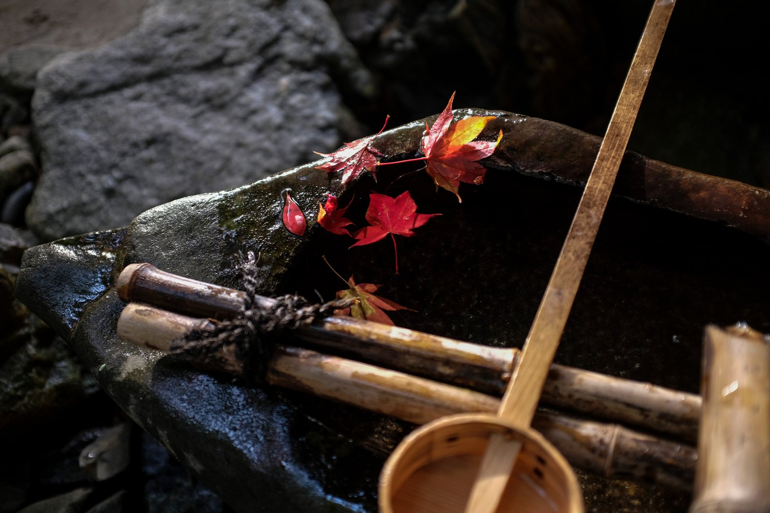Maple leaves and bamboo implements resting on a stone purification fountain, photographed with the Fujifilm X100F