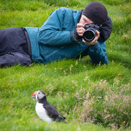photographer taking a photo of a puffin