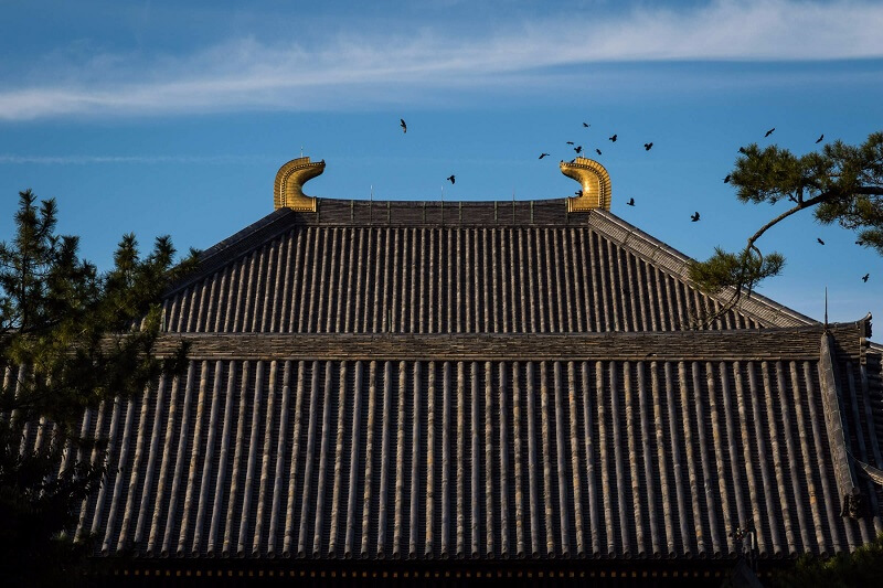 Low ISO Example - Roof of a Temple in Japan